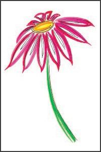 Cerise Flower